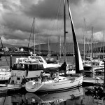 Dingle Masts