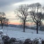 Winter in Ardsollus