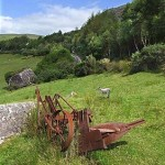 abandoned plough